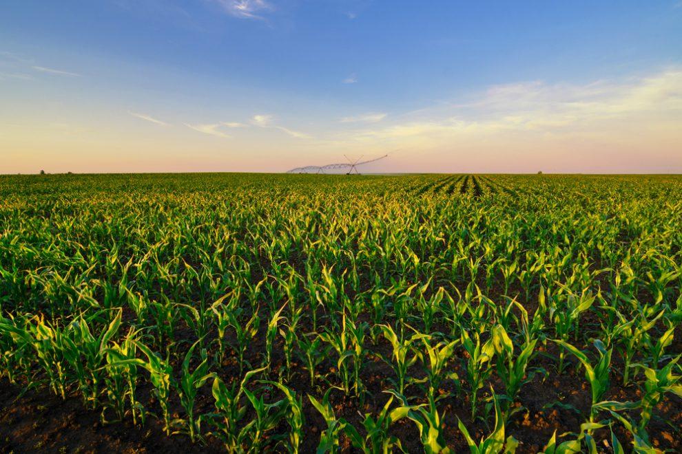 A mezőgazdasági területek szakszerű öntözése – Tudnivalók a traktor szivattyúkról